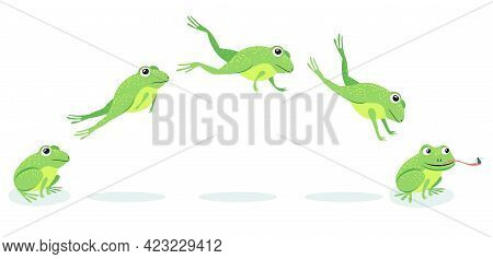 Animated Process Of Frogs Leaps Sequence. Cartoon Toad Jumping For Prey, Catching Insect Vector Illu