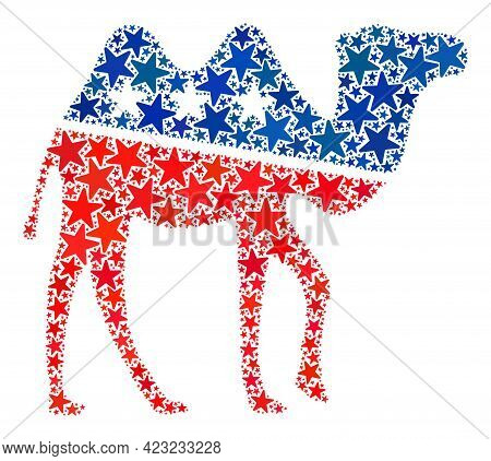 Camel Mosaic Of Stars In Different Sizes And Color Tinges. Camel Illustration Uses American Official