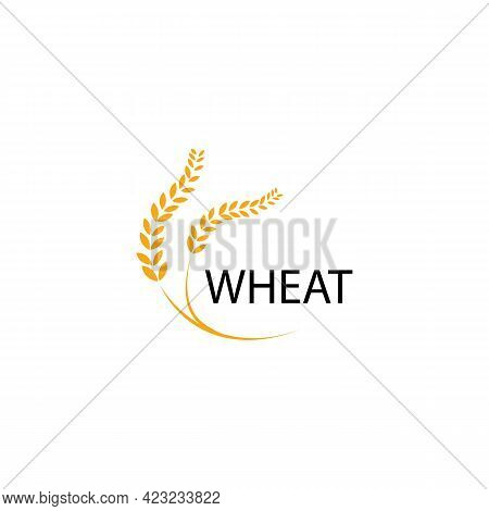 Wheat Yellow Spikelet Sign Icon. Vector Illustration Eps 10