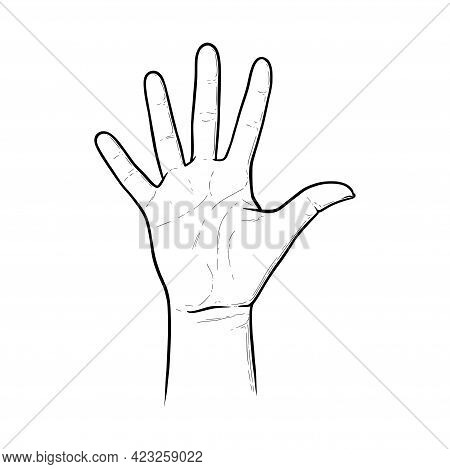 Five Raised Fingers As A Greeting To Say Hi. Highfive Gesture Axpressinf Approval Or Salutation. Ske