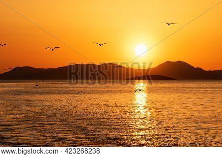 Beautiful Golden Sunset Over The Sea And Silhouettes Of Seagulls, Corfu Island, Greece.