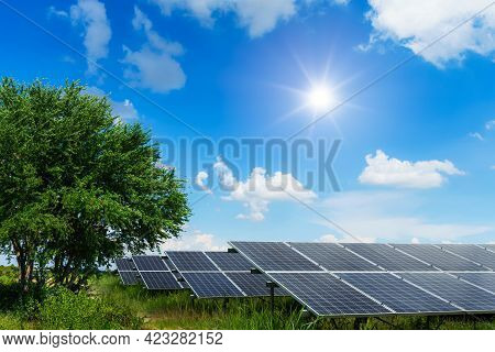 Photovoltaic Modules Solar Power Plant In Tree Green Leaves On With A Meadow At Landscape Views Spri