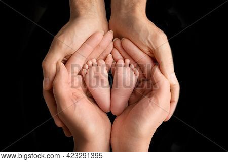 Father And Mother Hold The Bare Feet Of The Newborn On A Black Background. Babys Tiny Feet. Family,