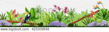 Jungle Floral Border, Vector Tropical Nature Illustration, Toucan, Green Grass, Leaves, Stone, Exoti