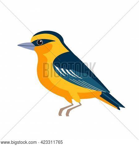 Oriole Is An Old World Family Of Passerine Birds. Orange Songbird Cartoon Flat Style Beautiful Chara