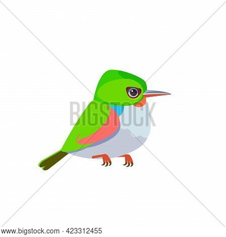 Cuban Tody Or Jamaican Tody. Exotic Small Tropical Bird Isolated On White Cartoon Vector Illustratio