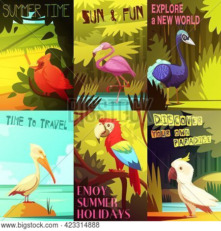 Exotic Colorful Birds 6 Posters Composition With Cockatoo Parrot  Pelican And Flamingo On Beach Reso