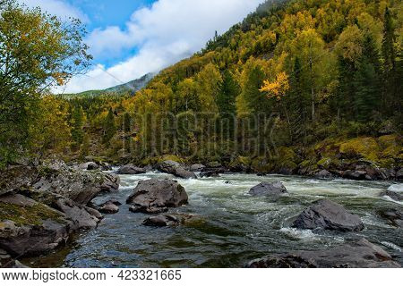 Russia. South Of Western Siberia, Altai Mountains. Early Autumn On The Mountain River Chulcha (a Tri