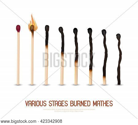 Various Stages Of Matches Burning From New To Completely Burned Set Isolated On White Background Rea