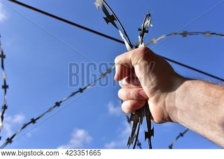 Male Hand Holding On To The Barbed Wire Against The Blue Sky. The Concept Of Not Freedom As Exclusio