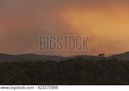 Photograph Of Bushfire Smoke At Sunset From Hazard Reduction Burning In The Blue Mountains In New So