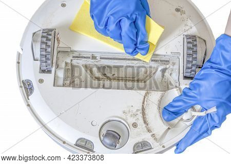 A Hand Washes A Dirty Robot Vacuum Cleaner With Her Hands In Blue Gloves After Cleaning The House. M
