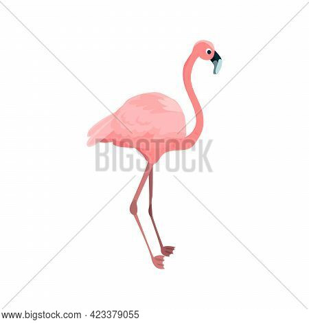 Flamingo Flat Icon. Colored Vector Element From Birds Collection. Creative Flamingo Icon For Web Des