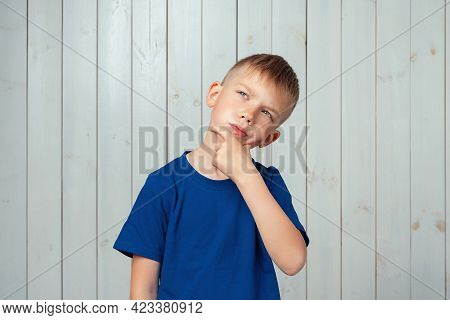 Portrait Of Dreamy Preteen Boy In Blue T Shirt Daydreaming About Having Something, Touching Chin And