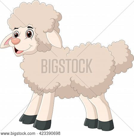 Cartoon Cute Sheep Posing On White Background