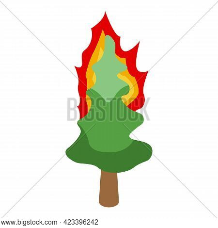 Burning Spruce Icon. Isometric Of Burning Spruce Vector Icon For Web Design Isolated On White Backgr