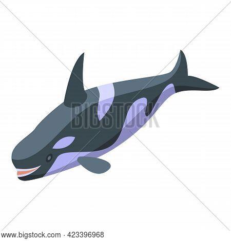 Killer Whale Swimming Icon. Isometric Of Killer Whale Swimming Vector Icon For Web Design Isolated O