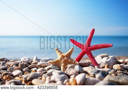 Starfish With Sea And Blue Sky On Background. Summer Photo Of Starfish On Beach And Free Space For Y
