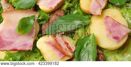 Banner Food Fried Potatoes With Meat And Herbs Mix. Fried Bacon Salad Dinner Dish Meat. Roasted Pota