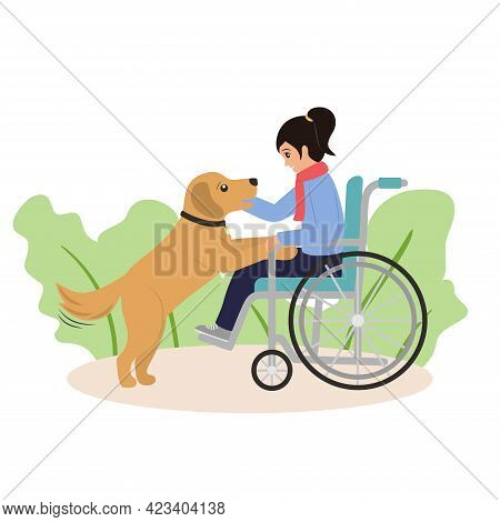 Girl In Wheelchair Plays Witn Her Dog. Companion Dog Supports Disabled Child. Optimism And Kindness
