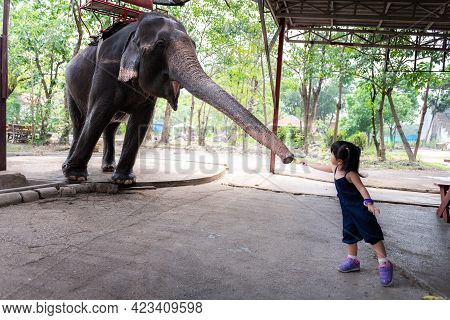 An Elephant Stretching Out Its Trunk To Receive A Banana Fruit That An Asian Girl Is Handing Over. G