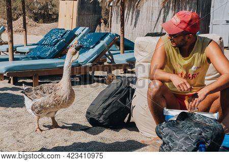 Kalafati, Greece - September 24, 2019: Diana The Goose, A Mascot Of Kalafati Beach, Mykonos, Curious
