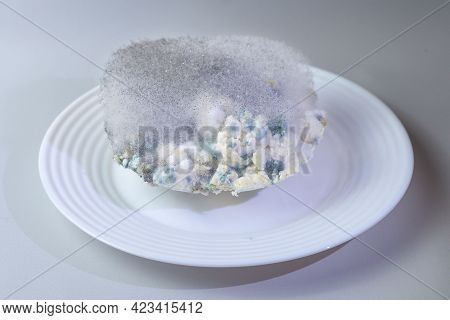 Different Kinds Of Mold On A Plate Of Cottage Cheese. Spoiled Product
