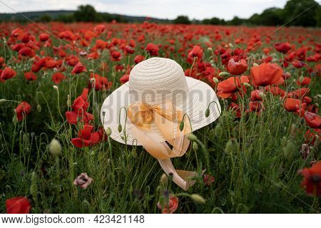 Closeup Perspective View Of Woman Wicker Hat With Light Colored Scarf In Field With Red Poppy Flower