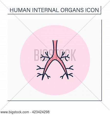 Bronchi Color Icon. Respiratory System Conducts Air Into Lungs. Medical Treatment. Respiratory Organ