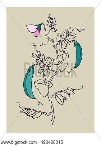 Decor Printable Art. Hand Drawn Vector Illustrations Of Pea Plant With Pods And Flowers For Home Int