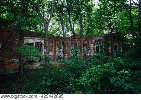 Overgrown Ruins Of Abandoned Mansion. Former Baron Von Derviz Manor, Ryazan Region