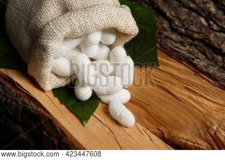 White Silk Cocoons With Sackcloth Bag And Mulberry Leaves On Tree Bark, Closeup