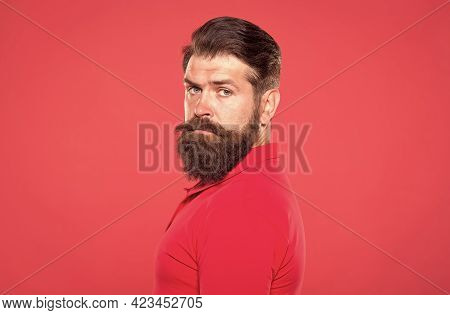 Hair Cut For Your Beard Shape. Bearded Man Red Background. Brutal Hipster Wear Long Beard. Hair Salo