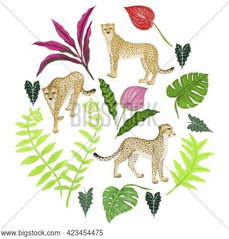 Cheetah Wild Animal, Green Leaf Tropical Plant And Flamingo Flower Illustration Drawing, Isolated El