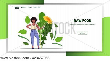 African American Woman Holding Yellow Dandelion Flower And Leaves Tasty Fresh Herb Healthy Raw Food