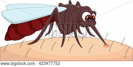 Cartoon Mosquito Biting Human Skin On White Background