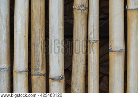 Picture Of A Fence Made Of Wood Material, This Fence Line Is Made Of Bamboo Which Has Been Treated W
