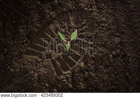 Footprint On The Ground, Footprint On The Soil, Green Plant Sprout Growing On Black Soil, Earth Day
