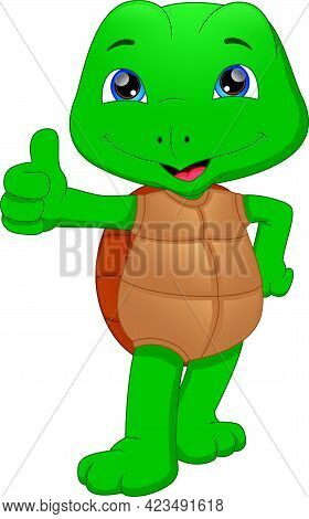 Cute Green Turtle Cartoon Thumb Up On A White Background
