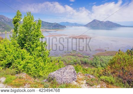 Skadar Lake National Park, Montenegro. Beautiful Wetland Landscape. Lake Surrounded By Mountains On