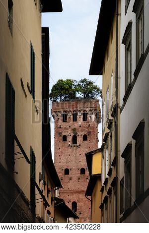 Guinigi Tower, Medieval Building In The Historic Town Center Of Lucca (tuscany, Italy). The Tower Is