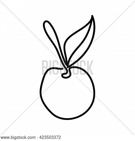 Cherry - One Line Drawing. Cherry Fruits Isolated On White Background. Continuous Line Fruit. Fresh