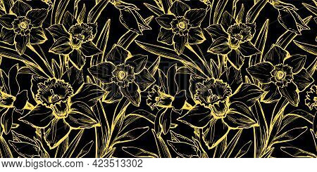 Outline Daffodils Flowers With Yellow Illuminating Contour On Black Background. Modern Floral Hand D