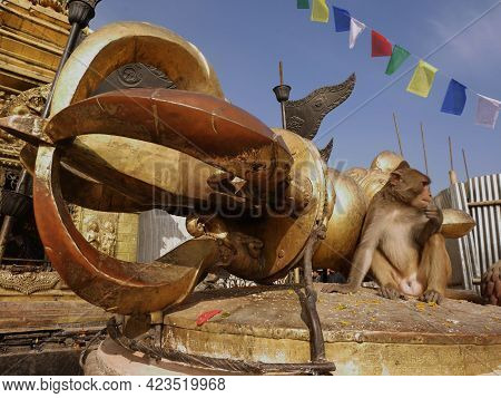 Monkey Sitting Relaxed On Tibetan Indra Vajra Weapon Figure Statue In Swayambhunath Pagoda Or Swayam