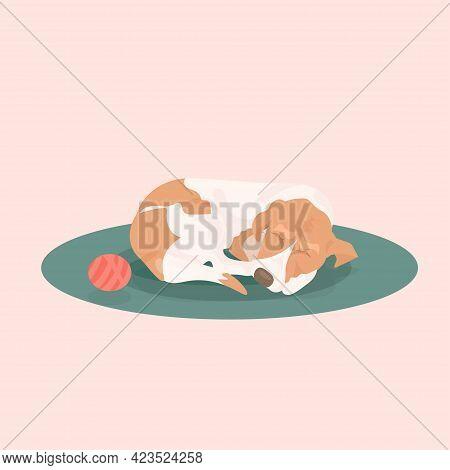 Cute Dog Sleeping On Carpet Home Pet Relaxing On Floor
