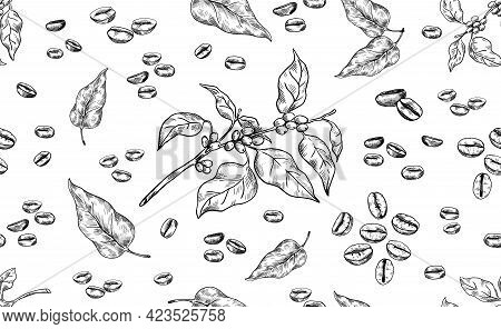 Coffee Pattern. Hand Drawn Seamless Texture Of Arabica Beans. Tree Branch And Leaves. Roasted Aroma