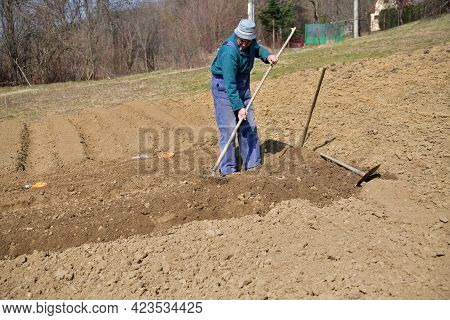 A Farmer In A Field Cultivates The Soil By Hand Before Planting The Seeds In The Spring