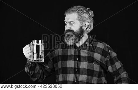 Man With Beer Stein. Beer With Foam. Brutal Hipster Drink Beer. Mature Bearded Barman Hold Glass. Co