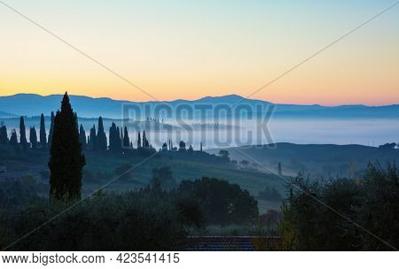 Hilly Fields in the foggy valley before sunrise, Tuscany, Italy.