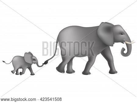 Running Two Big And Little African Elephants . Cute Elephants (loxodonta Africana) On White Backgrou